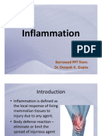 Inflammation.pdf