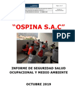Informe Mensual SSOMA.docx
