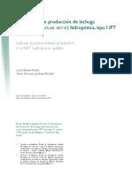 Dialnet-ExperienciaDeProduccionDeLechugaAmericanaLactucaSa-4835886.pdf