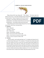 makalah jenis udang laut.docx