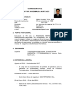 CV- Victor Malca-.docx