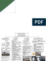 mapa conceptual.N 3.docx