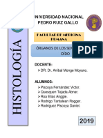 Informe de OJO Y OÍDO Histo
