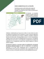 Condiciones Ambientales de La Región