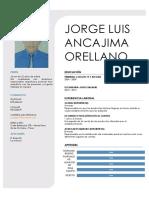 Cv Jorge Ancajima1