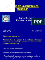 Mecanica Muscular