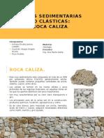 Rocas Sedimentarias No Clásticas-CALIZAS