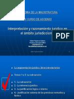 AMAG 2013 PCA Interpretación y razonamiento judicial 18may2013.ppt