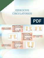 EJERCICIOS CIRCULATORIOS