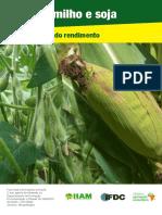 Guia tecnica producao de Milho - Mocambique