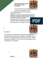 PROTOCOLO DE de incautacion y otros.pptx