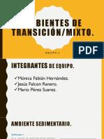 Exposicion Mixtos.pdf