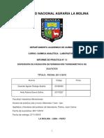 Informe 12 . Imprimir