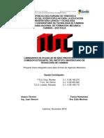 PROYECTO_2019 ING (CORRECCIONES)1.docx