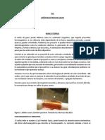 PIA_CANON_ELECTRICO_DE_GAUSS_OBJETIVO_MA.docx