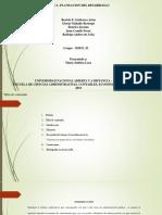 Trabajo Grupal Fase 2-Plan de Desarrollo