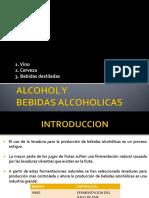 Alcohol y Bebidas Alcohólicas