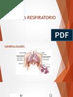 Fisiología respiración