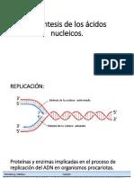 Quimica de Nucleotidos
