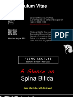 Expert's Things = Pleno Lecture Spina Bifida Blok 4 2015