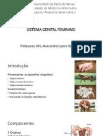 SLIDES REPRODUTOR FEMININO.pdf