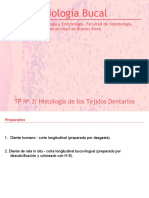 TP 3 Tejidos Dentarios.ppt