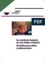 Behavior After Brain Injury Spanish