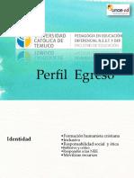 perfil de egreso, taller 2do semestre.pdf