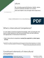 intercultural skill