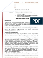 01. Respiracion_celular_y_fermentacion_lectura.pdf
