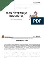 2019 Plan de Trabajo Individual