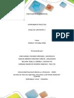 Informe Fisicoquimica _componete Practico (1)