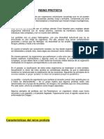 Características Del Reino Protista