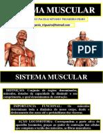 04 Sistema Muscular