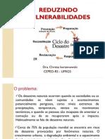 REDUZINDO VULNERABILIDADES