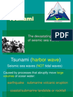 Tsunami