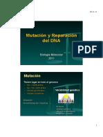 Unidad 4 Mutación y Reparación Del DNA.polimorfismo