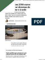 Multado Em 2750 Euros Por Sujeitar Dezenas de Cães à Fome e à Sede _