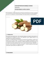 Proyecto Torta y Galletas Almidon de Yuca