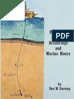 Mechanics-of-drillstrings-and-marine-risers.pdf