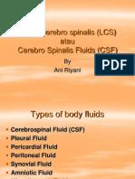 Liquor Cerebro Spinalis (LCS)
