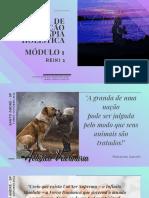 curso THV - terapia holistica veterinaria