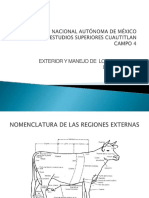 bovinosexterior-110923235944-phpapp02.pptx