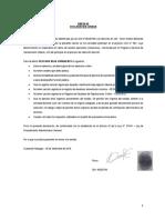 Anexos CAS (del 2 al 6) -2019.pdf