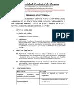 TDR Asistente de Evaluacion Tecnica