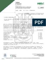 formato_suficiencia.docx