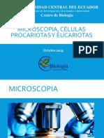 Microscopia, procariotas, eucariotas