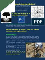 Una-guía-para-el-riego-de-árboles-1.pdf