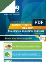 Tarea 1-Conceptos y Niveles Del MIP