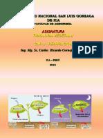 FISIO. VEG. II - CAP. 2 - Respiración 2018-I.ppt